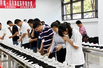日月潭紅茶評鑑成績出爐 魚池鄉農會有吸睛新作為