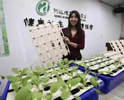 農委會開發「紙漿穴盤」大幅減塑