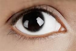 早上1杯它 65歲沒老花!26位眼科醫推薦的護眼三寶