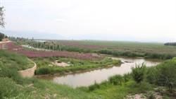 河北塞罕壩七星湖 獨特高原濕地公園
