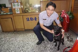 派出所領養小黑犬「OREO」 成山上區人氣警犬