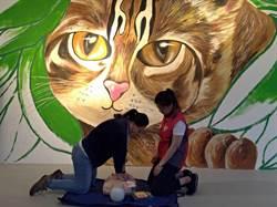 守護遊客生命安全  花博園區工作人員接受急救訓練