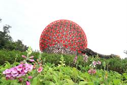 巨型機械花「聆聽花開的聲音」 臺中花博驚艷綻放