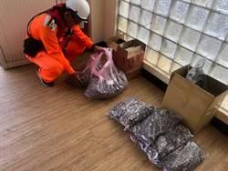 金門岸巡查獲郵寄陸菇  1周內第2次且重量相同