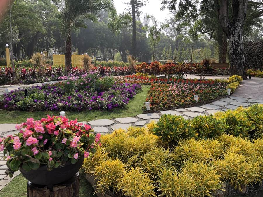 馬達加斯加以「神奇的花園」為題,在后里森林園區國際庭園區展出!(陳世宗翻攝)