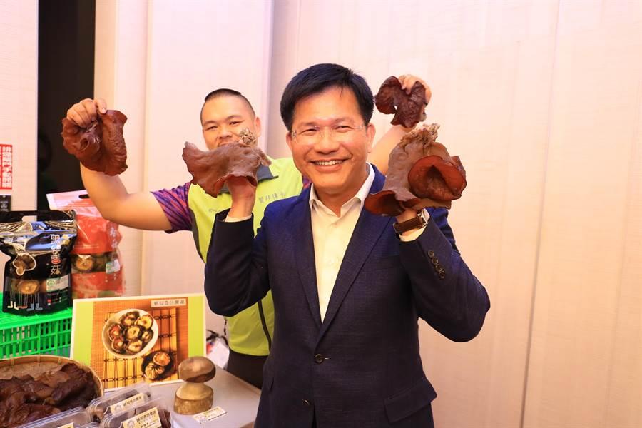 台中市長林佳龍9日拿起青年農友種植的木耳,直呼木耳比臉還要大。(盧金足攝)