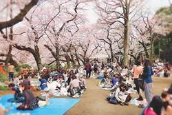 注意!日本明年將有 10連休 遊日最好避開這時段