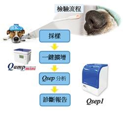 光鼎生科攜手寵物醫學中心 開發出多重PCR寵物檢測試劑