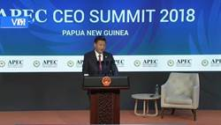 APEC演講 習:貿易戰沒有贏家 自我封閉只會失去世界