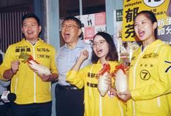 時力沒大人 林亮君宣布投入黨主席改選