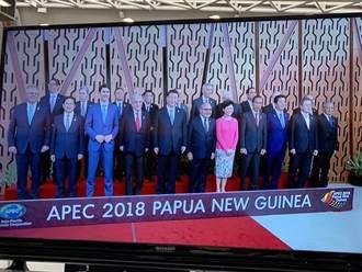APEC領袖合照 張忠謀與習近平同框