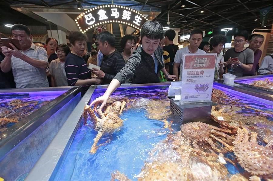 盒馬鮮生所銷售的俄羅斯帝王蟹全部產自俄羅斯遠東高緯度深冷海域,每日鮮活到貨