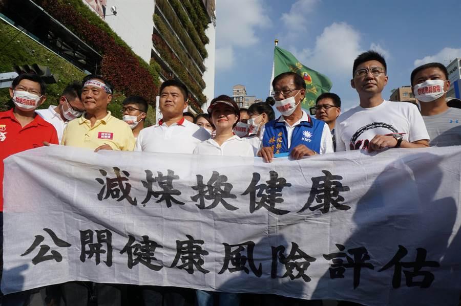 盧秀燕以「台中市民」角色,聲援反空汙大遊行。(王文吉攝)