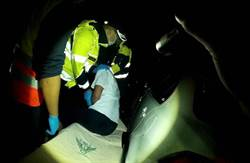車輛怠速聲引注意 台中警鬼門關前救回輕生男