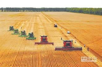 陸祭「大豆牌」拚出免疫力 川普喊破喉嚨仍讓農民失望