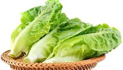 美加蘿蔓生菜染大腸桿菌 食藥署急發禁令!籲民眾勿吃