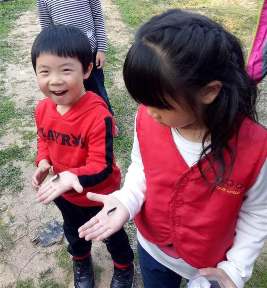 小朋友開心野放螢火蟲的成蟲和幼蟲。(金門縣林務所提供)