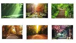 【心理測驗】6條小路你比較想走哪一條?解析讓你真實性格原形畢露!