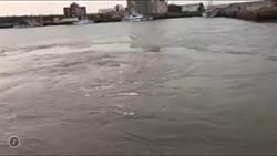 龍鳳漁港出現大漩渦異象 研判為俗稱的瘋狗流