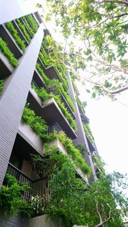 就愛綠色!台中北屯區「寶樺境雙」綠覆率100%  猶如住在微森林