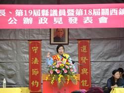 挑戰新竹縣長選舉失利 徐欣瑩辭民國黨主席