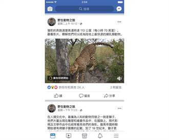 Facebook推出中文版插播廣告 要讓創作者賺錢囉