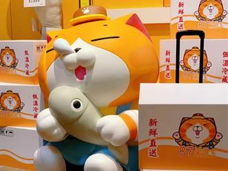 限時2個月「白爛貓87超商限定店」12/1起快閃華山