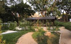 薄紗美魔女拍養眼照 6億整建新竹公園當背景