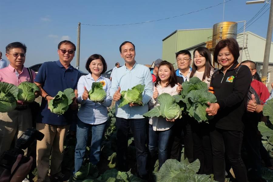 朱立倫(左四)赴雲林採購400噸高麗菜,與張麗善(左三)共同幫助農民。(張朝欣攝)