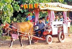 萬丹采風甘蔗祭 孩童樂坐牛車