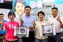 賣力為盧秀燕輔選 楊瓊瓔傳出任台中副市長