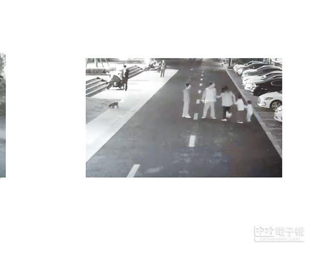 11月初,杭州男童母親因驅趕狗反被狗主人打傷,此事件被認為是杭州限狗令出台的導火線。(截圖自微博@杭州日報)