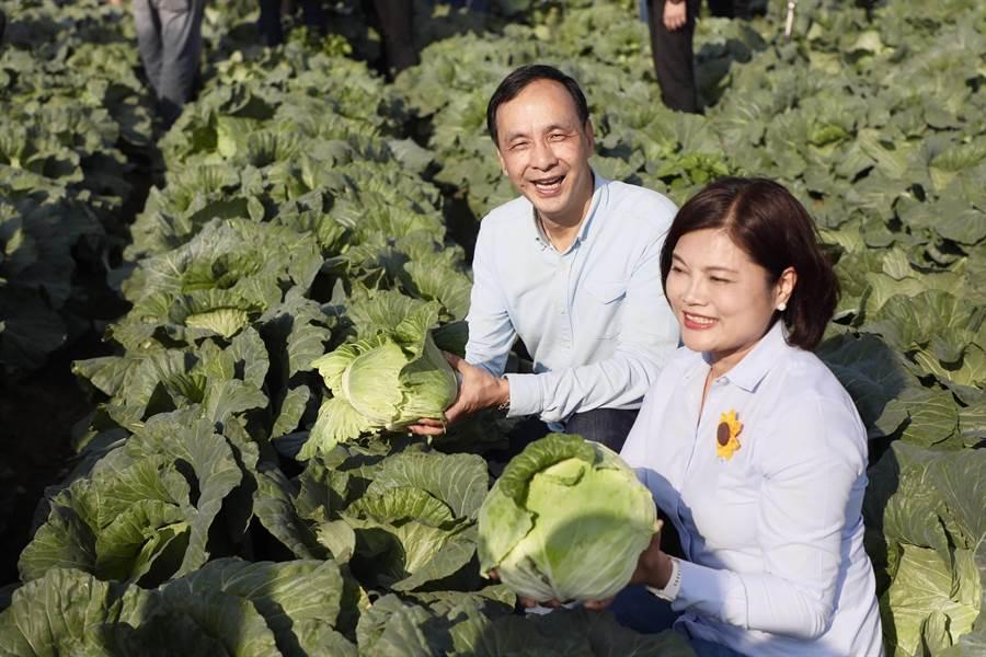 新北市長朱立倫上周末南下雲林縣,關心高麗菜生產情形。(譚宇哲翻攝)
