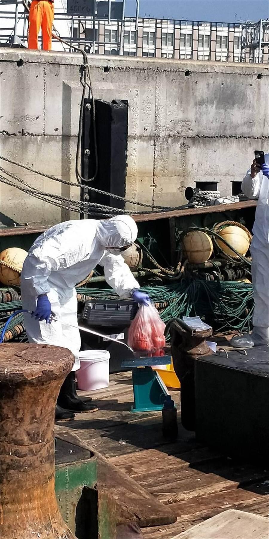 海巡人員登上陸籍漁船查扣可疑豬肉。(徐養齡翻攝)