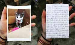 藍晒圖「貓很重要」義賣展  43年老照片驚喜現身