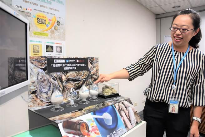 工研院與台糖合作,將常見、過去只廢棄的牡蠣殼,淬煉成碳酸鈣粉,回收再利用。(莊旻靜攝)