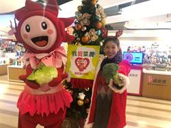 台中大遠百聖誕公益挺菜農 12/8起入館消費滿額送青菜
