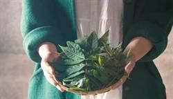 亞洲第一抗氧化蔬菜是它!提升記憶力、強化精子品質