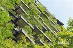 為都市找回綠地 高樓種樹風水怎麼說?