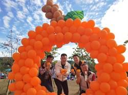 豐原公老坪飄果香 千人柑橘派對好熱鬧!