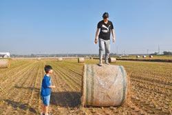 田間稻草捲 孩子的大玩具