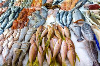 影》別被價錢騙了!去市場絕對不能買的6種魚產