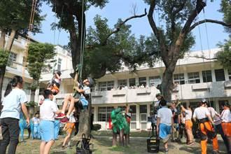 竹田國小推廣閱讀新招數 「攀樹架繩」挑戰自己好好玩