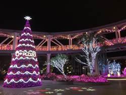9米高粉色耶誕樹 點亮高鐵區購物廣場