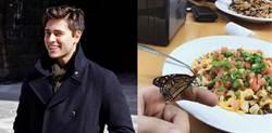 小鮮肉與蝴蝶的奇遇! 浪漫情節讓網驚呼:根本可以拍電影