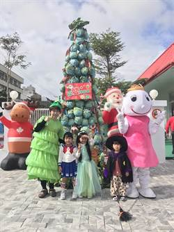可以吃的聖誕樹 幼兒園用高麗菜搭建聖誕樹