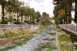 台中惠來溪、潮洋溪水質淨化及景觀工程 打造永續水環境