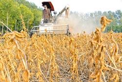 大豆牌害慘美農民又無處求償 川普打貿易戰陷兩難