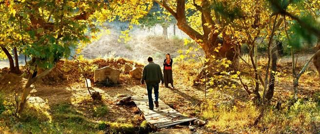 錫蘭新片《野梨樹》以2500多句台詞,犀利闡述他對親情、愛情、鄉愁、文化、世代與宗教的獨到見解,堪稱前所未見。(海鵬提供)