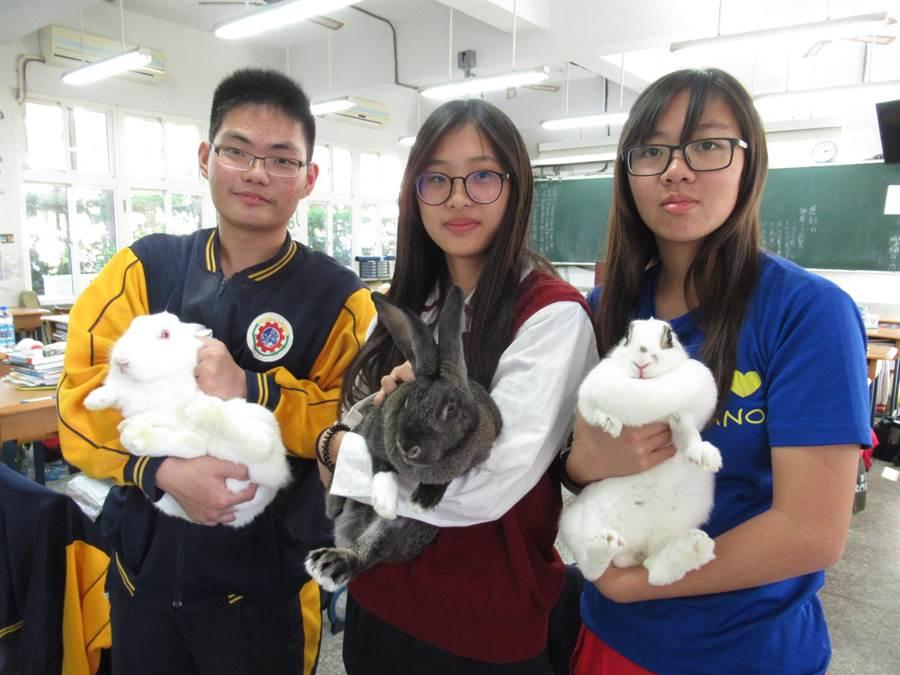 2018.12.17 台南市▲北門農工畜產保健科學生因課程需求飼養許多動物,且一屆屆傳承,這些動物們不只扮演助教角色,還是學生的寶貝寵物。(莊曜聰攝)